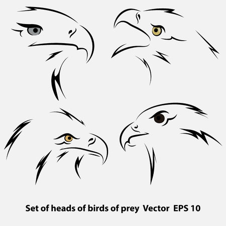 Set of Vector sketch of eagles heads profile in black isolated on gray background. Vector illustrations
