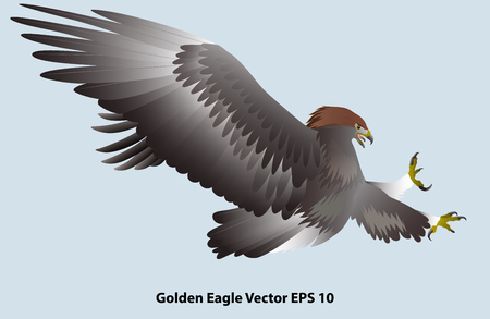 attacking golden eagle isolated on light blue background. Vector illustration Иллюстрация