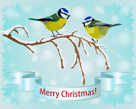 Christmas background for a card with titmouse on a branch and snowflakes. Vector illustration