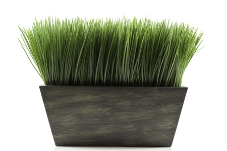 a brown planter box with green grass Stock Photo