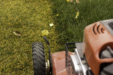 cutting the grass in late fall before winter with lawnmower Stock Photo