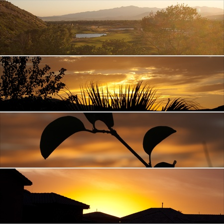 collage of four different sunsets including, golf, silhouettes, and homes Stock Photo