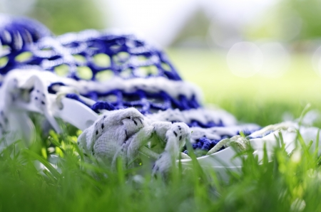 Lacrosse stick with blue net in the bright green grass.