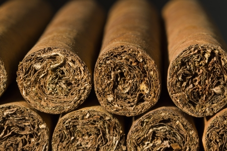 A macro photo of a bundle of cigars
