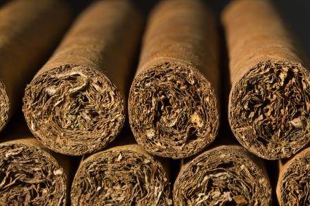 A macro photo of a bundle of cigars