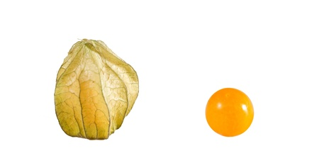 cape gooseberry: Golden berries  Physalis peruviana  on white background  Closed and without