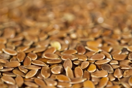 linum usitatissimum: Dried brown flax seeds  Can be used as background  Flax is also known as common flax or linseed  Linum usitatissimum   Stock Photo