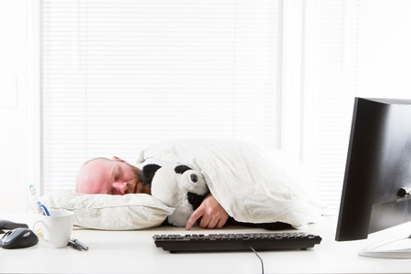 Exhausted office worker sleeps with his koala bear teddy
