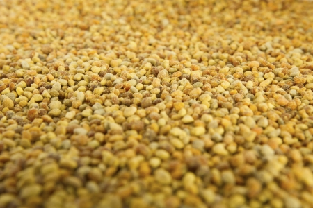 bee pollen: Bijenpollen Bijenpollen is een van de rijkste en meest pure natuurlijke voedingsmiddelen ooit ontdekt, en de ongelooflijke voedingswaarde en medicinale waarde van de pollen is al eeuwen bekend Stockfoto