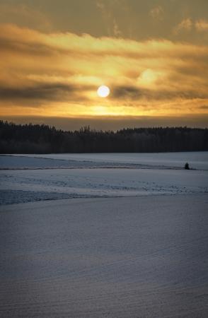 Sunrise in Norway  Deers graze far away Stock Photo - 19200493