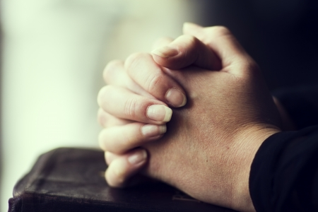 learning  pray: A close-up of a christian woman folding hands on the bible  Very shallow depth of fields  Toned