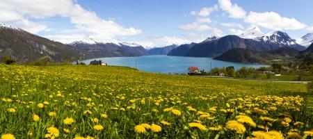 scandinavian peninsula: A fjord in Stranda, Norway  Stock Photo