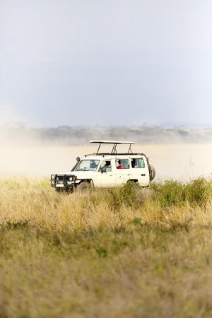 game drive: Safari tourists on game drive in Serengeti