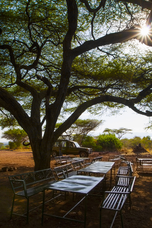 safari game drive: Safari tourists taking a break from the game drive at a picnic site in Lake Manyara, Tanzania.