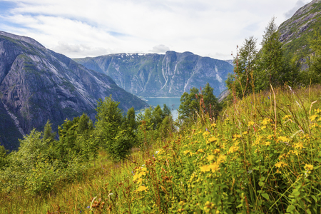 hardanger: Beautiful mountains and lush scenery in Hardangerfjorden. Scenic landscape of fjord and mountains a summer day in Norway.