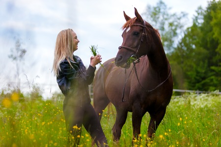 Happy young woman feeding her arabian horse with snacks in the field Standard-Bild