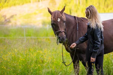 Woman feeding her arabian horse with snacks in the field