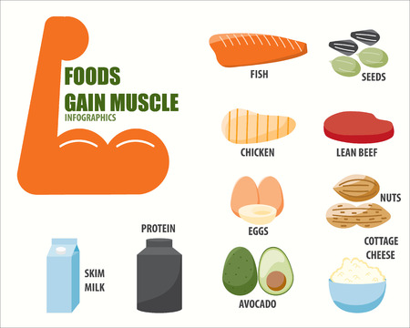 gain: FOODS GAIN MUSCLE infographics