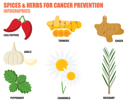 SPICES AND HERBS FOR CANCER PREVENTION Vettoriali