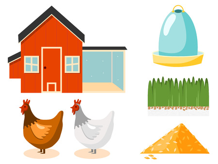 chicken coop vector illustration