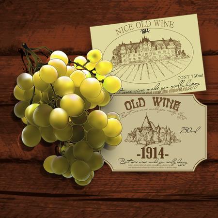 grapevine: wine and grapevine