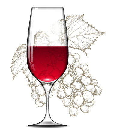 glass of red wine: glass of red wine and a branch of grapes