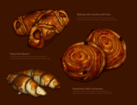 freshly: Advertising freshly baked ruddy rolls and croissants on a brown background.  High detailed realistic illustration Illustration
