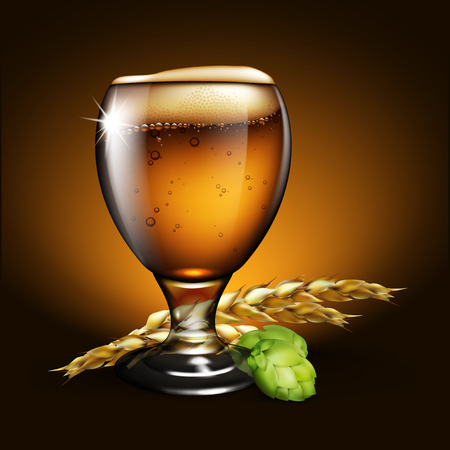 A glass of beer with foam, spikes of barley and a bump of hops. Highly realistic illustration with the effect of transparency.
