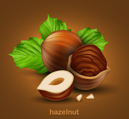 Hazelnuts. Whole walnut, half walnut and walnut in half shell with green leaves on a brown background.  3D vector. High detailed realistic illustration Ilustração