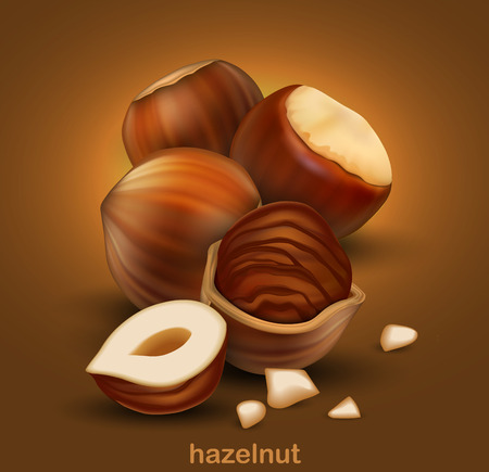 Hazelnuts. The whole nuts, half nuts and half a nut in shell on a brown background.  3D vector. High detailed realistic illustration