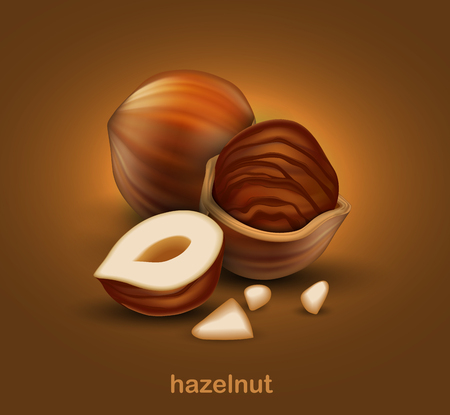 Hazelnuts. The whole nut, half nut and half a nut in shell on a brown background.  3D vector. High detailed realistic illustration