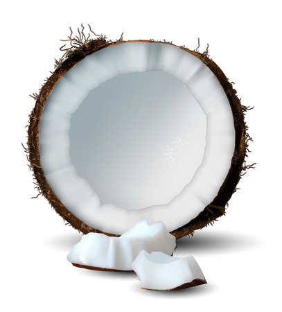 Chopped coconut and several pieces of it on a white background. 3D vector. High detailed realistic illustration