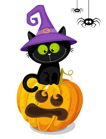 Halloween background with a black cat in a witch hat and pumpkin. Hand drawing cartoon illustration