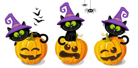 Set of black kittens in a witch hatss sitting on a Halloween pumpkins. White background.  Hand drawing cartoon illustration