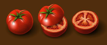 A few tomatoes. Whole tomato, sliced tomato and half a tomato jn a brown background. Highly realistic illustration. Ilustração