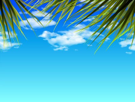 Palm leaves on a background of blue sky with clouds. 3D vector. High detailed realistic illustration. Ilustrace