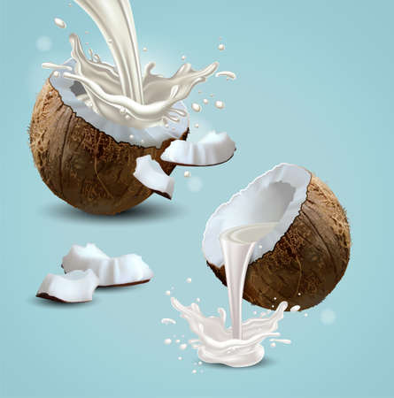 Two halves of a coconut, from which milk splashes. Highly realistic illustration.