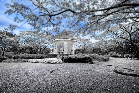 bandstand: Blue and white picture of the bandstand in Singapore botanic gardens Stock Photo