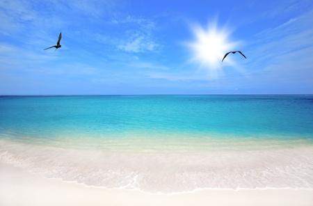 Turquoise water and white sand at Boca Grandi beach, Aruba