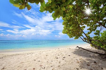 Turquoise water and white beach on Baby beach, Aruba