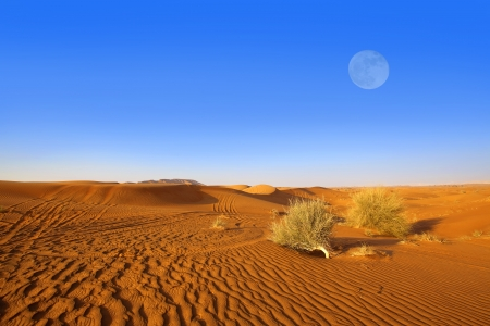 sahara desert: Sand dunes and moon in the Dubai desert Stock Photo