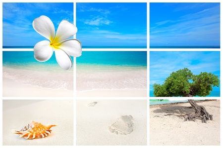 Collection of beach pictures from the Caribbean island Aruba Stock Photo