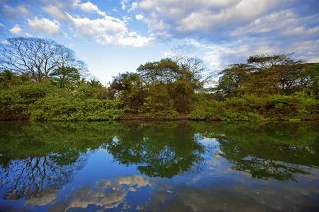 Nature in Guanacaste photo