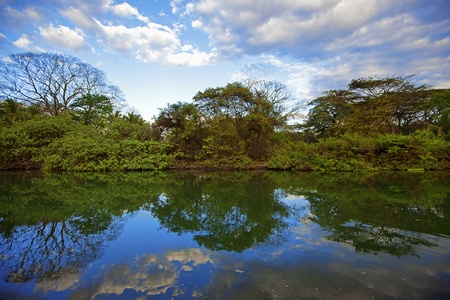 Nature in Guanacaste Stock Photo