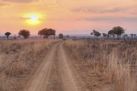 Sunset over the dry African Savannah, Mikumi, Tanzania photo