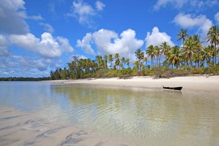 untouched: Untouched nature at Mafia Island in Tanzania