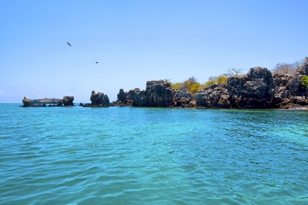 mafia: Untouched nature at Mafia Island in Tanzania