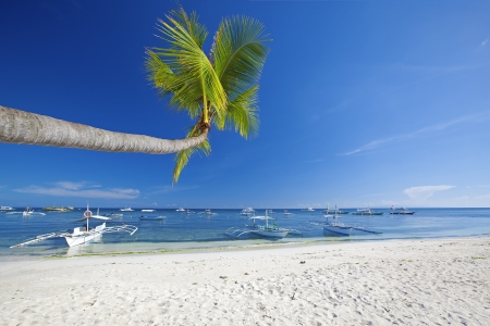 bohol: View of the beautiful beach on Panglao Island, Bohol