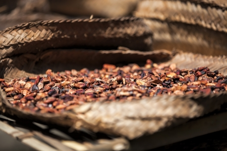brewed: Close-up of Balinese coffe beans in a basket - Shallow DOF Stock Photo
