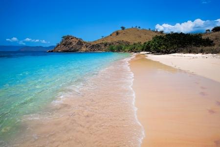 komodo island:  Sunny day on Pink Beach in Komodo National Park
